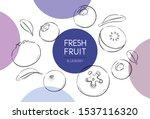 fresh fruits illustrations... | Shutterstock .eps vector #1537116320