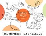 fresh fruits illustrations... | Shutterstock .eps vector #1537116323