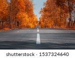 Empty Asphalt Road In Autumn...