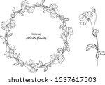 vector set. delicate flowers....   Shutterstock .eps vector #1537617503