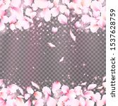 rose petals frame with falling... | Shutterstock .eps vector #1537628759