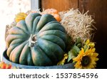 Variety Of Gourds And Pumpkins...