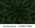 christmas tree branches.... | Shutterstock .eps vector #1538017886