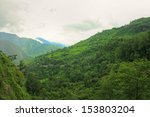 mountain vegetation | Shutterstock . vector #153803204