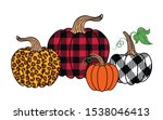 set of diverse pumpkins.... | Shutterstock .eps vector #1538046413
