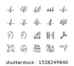 hair loss treatment flat line... | Shutterstock .eps vector #1538249840