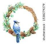 Christmas Wreath Blue Jay On A...