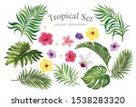 Tropical Set With Fowers And...