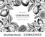 Ink Hand Drawn Citrus Fruits...