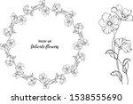 vector set. delicate flowers....   Shutterstock .eps vector #1538555690