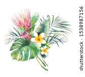 watercolor protea flowers... | Shutterstock . vector #1538987156
