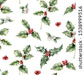 Watercolor Holly And Mistletoe...