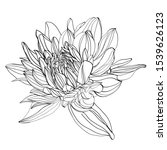 black and white line... | Shutterstock .eps vector #1539626123