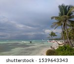 Beautiful Beach With Palms And...