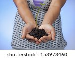 Holding soil and plant. - stock photo