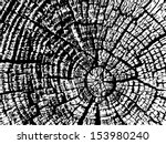 Cracked Wood Texture. Vector....