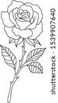 vector line art beautiful flower | Shutterstock .eps vector #1539907640