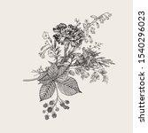 autumn flowers. classic flower... | Shutterstock .eps vector #1540296023