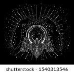 vector drawn fortuneteller... | Shutterstock .eps vector #1540313546