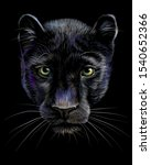 panther. artistic  sketchy ... | Shutterstock .eps vector #1540652366