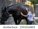 Child Grooming Horse With Brus...