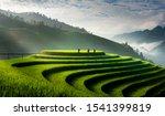 Terraced Rice Fields In Mu Cang ...
