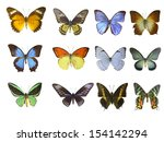 butterfly on white | Shutterstock . vector #154142294