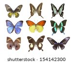 butterfly on white | Shutterstock . vector #154142300