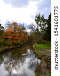 Small photo of A vertical view of the Pike River in Petrifying Spring Park in Somers Wisconsin on a blustery autumn day showing beautiful colors in the trees.