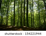 beautiful nature of soderasen... | Shutterstock . vector #154221944