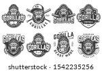 vintage sport teams logotypes... | Shutterstock . vector #1542235256