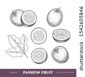 vector passion fruit hand drawn ... | Shutterstock .eps vector #1542605846