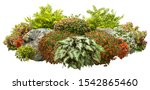 Cut Out Garden Design Isolated...