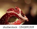 Masquerade Ball The Evening Mask