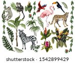 Jungle Animals  Flowers And...