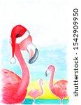 pink flamingo in santa hat on... | Shutterstock . vector #1542909950