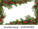 christmas floral background... | Shutterstock . vector #154294583