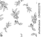 floral background. hand drawn... | Shutterstock .eps vector #1543022270