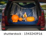 A Car Is Decorated For Trunk Or ...