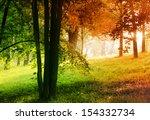 autumn in summer forest  ...   Shutterstock . vector #154332734