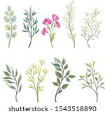 set of branches of field plants.... | Shutterstock .eps vector #1543518890