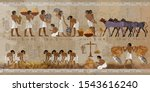 Life In Ancient Egypt  Frescoes....