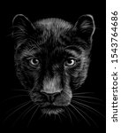 panther. artistic  sketchy  ... | Shutterstock .eps vector #1543764686