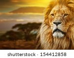 Lion Portrait On Savanna...