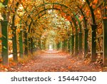 Autumn In A Garden Tunnel At...