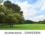 trees and lawn in green park | Shutterstock . vector #154453304