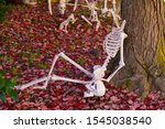 Headless Halloween Skeleton...