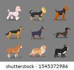 Different Dog Breeds Flat...