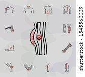 soft tissue injuries   pain...   Shutterstock . vector #1545563339