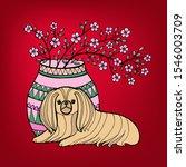 Pekingese. Decorative Breed...